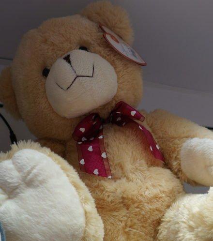 Fluffy bears 1